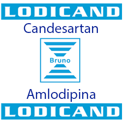 Lodicand