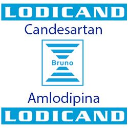 Lodicand
