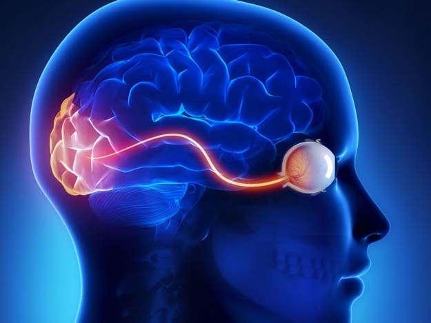 , Prevenzione, antiossidanti mirati ai mitocondri ringiovaniscono le arterie
