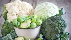 , Basta una porzione al giorno di verdure a foglia verde per rallentare il declino cognitivo