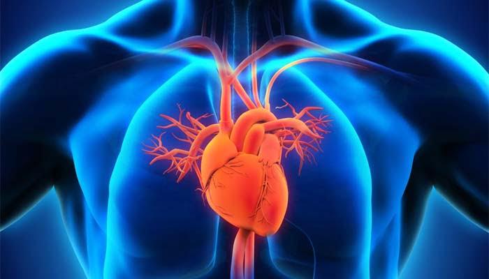 , Ipertensione polmonare, nasce una nuova associazione scientifica mondiale