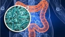 , Ricerca, vasodilatatori per diminuire il dolore da colica renale