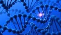 , Emofilia A, la terapia genica supera le aspettative