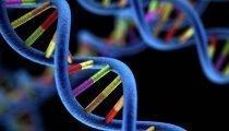 , Oncologia, con la profilazione genomica terapie sempre più personalizzate