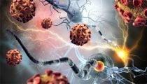 , Celiachia, dalle nanotecnologie un nuovo trattamento desensibilizzante