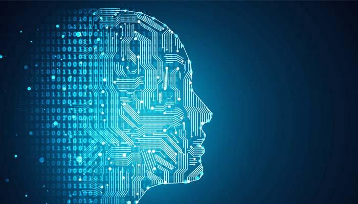 Ricerca, Neuroni Biologici E Artificiali Comunicano Via Web