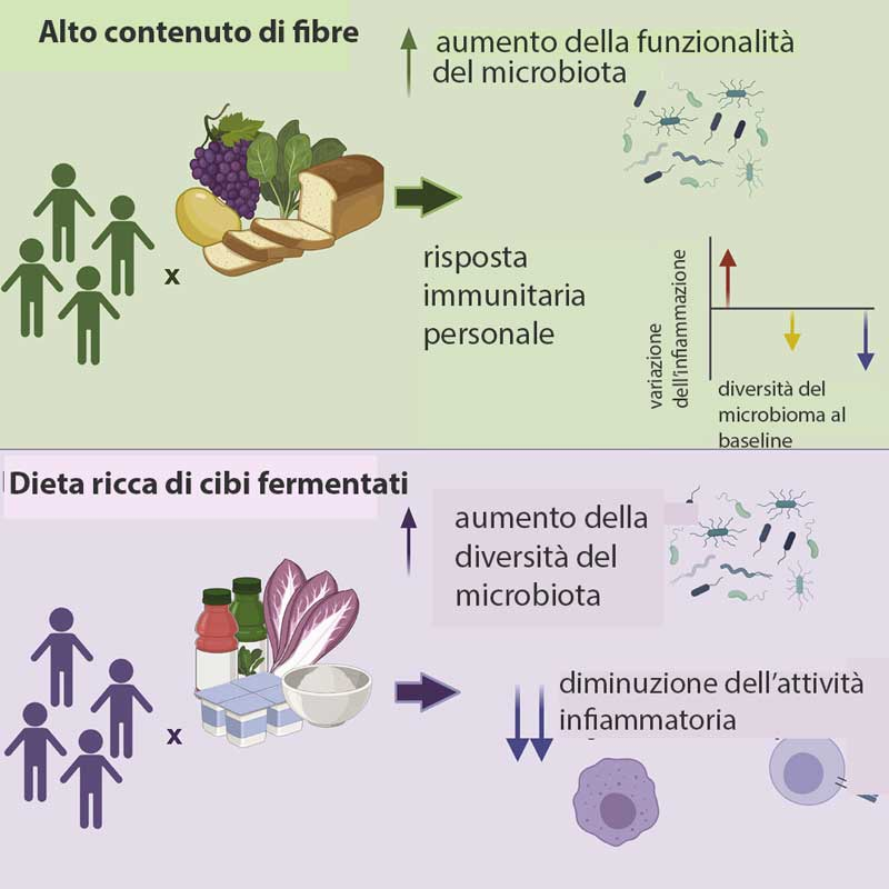 diete e microbiota