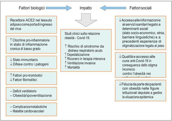 rapporto obesita Italia